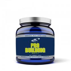 Pro Building - aminokwasy BCAA 4:1:1 w proszku - 500g
